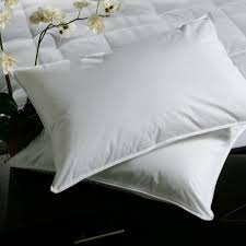 100 down pillow.  Pillow Goose Down Pillow  100 To 100 T