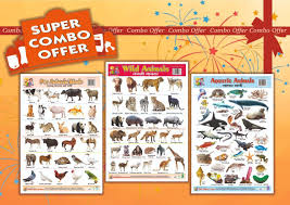 Buy Wall Charts Plastic Non Tearable With Set Of 3 Charts