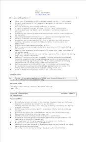Contemporary It Recruiter Resumes Motif Documentation Template