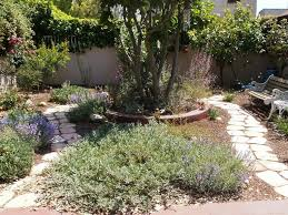 a los angeles native garden after 12 months grid24 12
