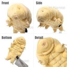 tardigrade actual size strapya world sea creature tardigrade water bear plush m size
