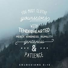 Patience Quotes From The Bible Custom Unconditional Love Quotes From The Bible Simple 48 Best Faith Images