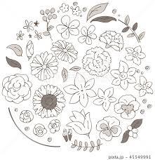 様々な花のイラストのセットセピアのイラスト素材 45549991 Pixta
