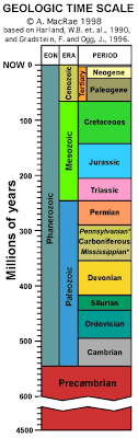 Timeline   Geologic time scale      s board   Pinterest     Answers in Genesis Geologic Time Scale Analogy