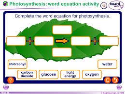 chemistry word equations worksheet ks3 tessshlo