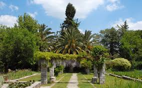 the diomedes botanical garden is a gem in the heart of athens
