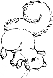 Small Picture Squirrel coloring page Animals Town animals color sheet