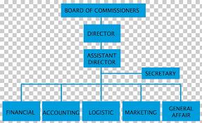 Organizational Chart Management Organizational Structure