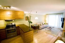 kitchen living room 18 sq m