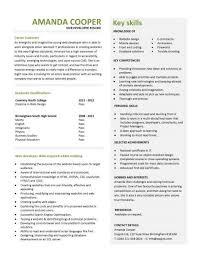 Developer Resume Examples Delectable Web Developer Resume Example CV Designer Template Development Maker