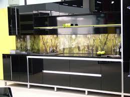 Black High Gloss Kitchen Doors Kitchen Amusing Black High Gloss Wood Kitchen Cabinet With Green