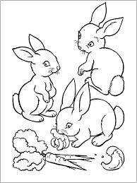 Tranh tô màu ba con thỏ ăn cà rốt « in hình này