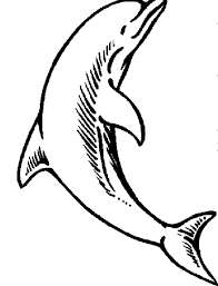 Small Picture Cute Animal Coloring Pages DolphinsAnimalPrintable Coloring