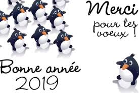 Bonne Année 2019 Textes Images Dessin Des Idées Pour Des