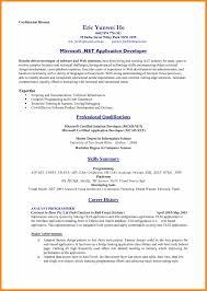 100 Standard Professional Resume Format Chinese Resume