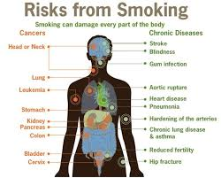 best quit smoking today images help quit smoking  quit smoking essay want to quit smoking seek professional help science world