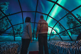 Glass Igloo Northern Lights Spend The Night In A Glass Igloo Under The Northern Lights