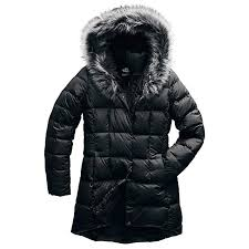 Amazon Com The North Face Dealio Down Parkina Womens Clothing