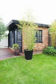 office garden shed. flat roof garden shed office timber cladding contrasting permitted development
