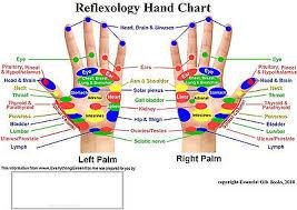 Whole Body Chart Wooden Roller Reflexology Health Thai Full Body Massage