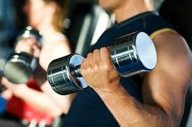 gym training workout program