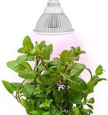 Sandalwood LED Plant Grow Light for Hydroponic ... - Amazon.com