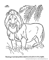 Small Picture Wild Animal Coloring Pages Male Lion Coloring Page and Kids