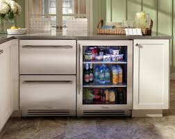 small undercounter refrigerator. Wonderful Undercounter Innovative Undercounter Refrigerator Home Design Garden Inspiring  Refrigerators The New Must Have In Modern Kitchens Beautiful  And Small D