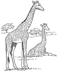 Print Download Giraffe Coloring Pages For Kids To Have Fun