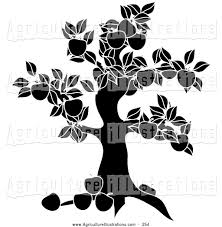 apple tree clipart black and white. agriculture clipart of a black apple tree silhouette on white and