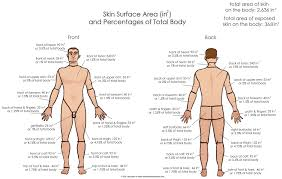 Military Disability Ratings For Skin Conditions