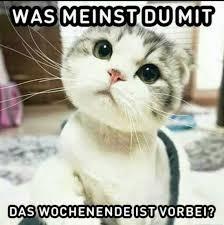 Witzige Sprüche Wochenende Vorbei17jpg Gb Bilder Gästebuch Bilder