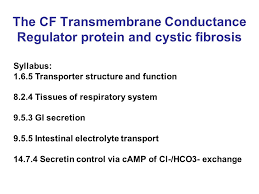essay marking scheme no answer fail very incomplete or  2 the cf transmembrane conductance regulator protein and cystic fibrosis