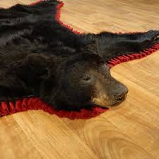 black bear skin rugs catalunyateam home ideas bizarre yet awesome bear skin rugs