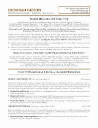 Board Of Director Resume Good Non Profit Board Of Directors Resume