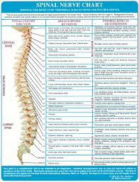 About The Spine Wood Family Chiropractic Center