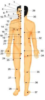 Pressure Point Chart Martial Arts Human Body Pressure Points Body Pressure Points Pressure