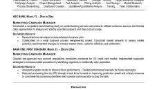 political campaign manager resume political adviser resume examples pictures hd aliciafinnnoack