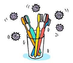 「歯ブラシ雑菌」の画像検索結果
