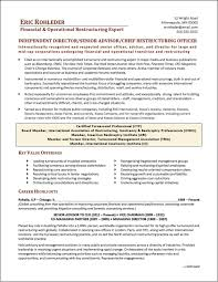 Executive Resume ChiefrestructuringexecutiveresumePage100jpg 51