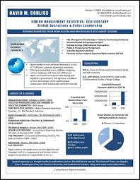 Graphic Resume Profile Examples Distinctive Documents