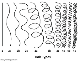 Andre Walker Hair Chart What Is Your Hair Type Why Is It Crucial Information
