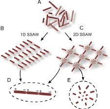schematic of the ssaw assisted nanowire patterning technique