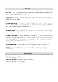 vinay seo resume sr search engine optimizer and website designer resume search engine