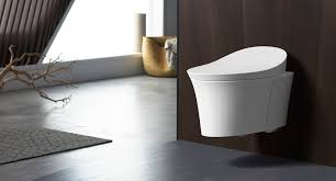 imagine the surprised looks you ll receive when your guests realize that your bathroom has a wall mounted super toilet of course this will add to the