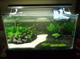 Beautiful Aquarium Design Idea for Relax