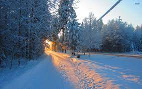 Winter Road Forest Morning Sun stock photos