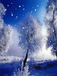 Animated Snow Scenes Winter Landscapes And Scenic Wintery Moving Snow Animations