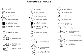 Genetic Pedigree Chart Symbols Symbols Commonly Used For Pedigree Analysis Family