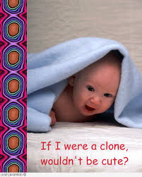 jose s great human cloning graphics  cute little baby